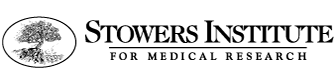 Logo for The Stowers Institute for Medical Research.